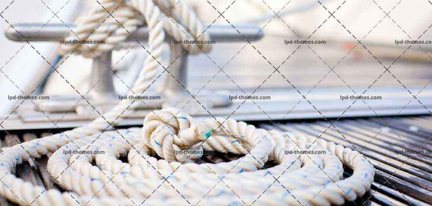 shutterstock_83834581-1